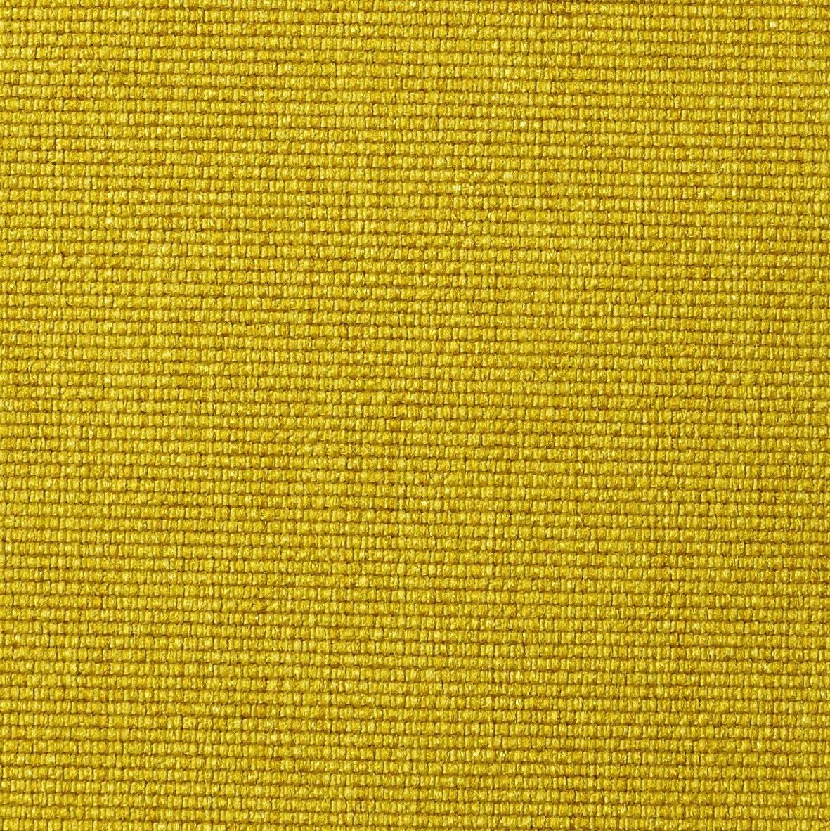 554 Soft Mustard Flower-20