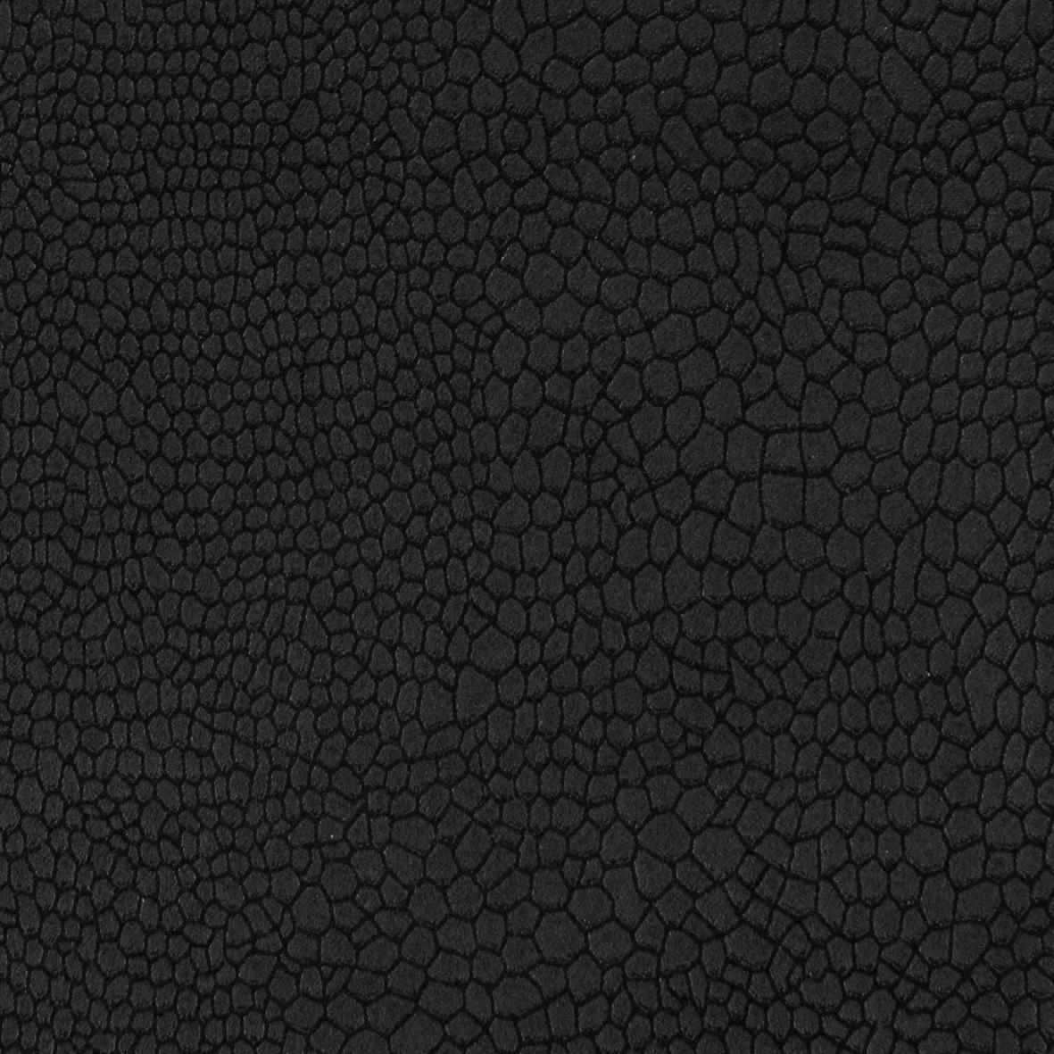 550-fanual-blacklowres_1